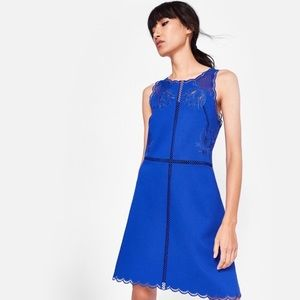 NWT Ted Baker Embroidered Scallop Dress
